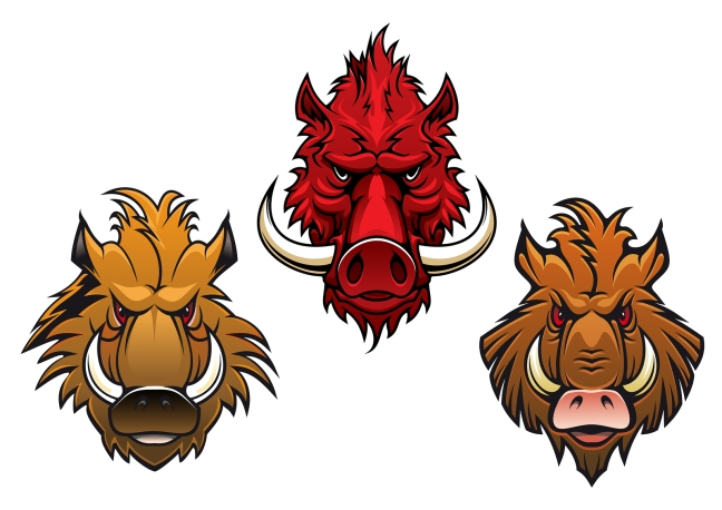Fierce cartoon wild boar characters